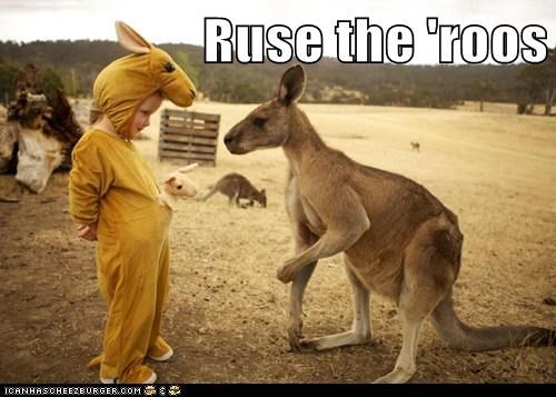 Ruse the 'roos