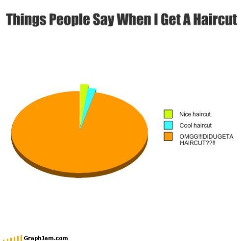 haircut,Pie Chart,omg