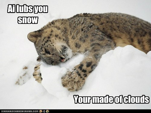 clouds snow snow leopards i love you cubs - 7028719104