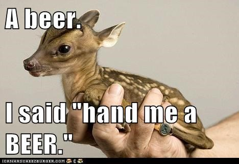 beer,holding,hearing,misunderstood,deer
