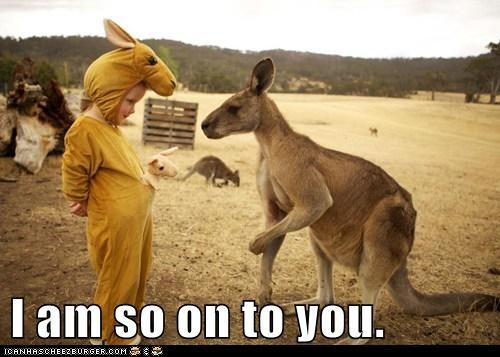 costume,kids,kangaroo,on to something,suspicious