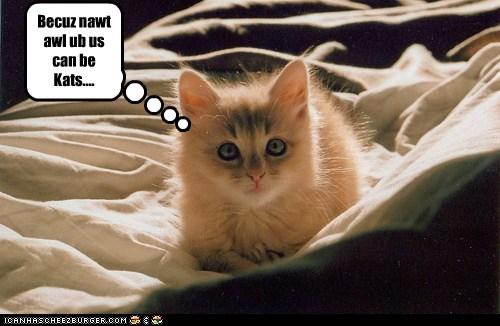 Becuz nawt awl ub us can be Kats....