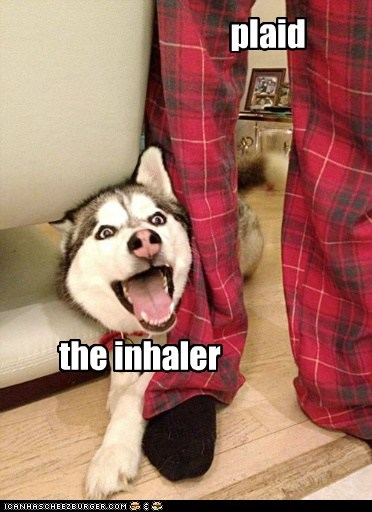 plaid the inhaler