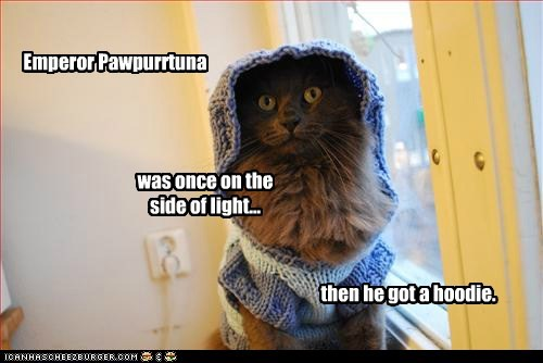 Emperor Pawpurrtuna was once on the side of light... then he got a hoodie.