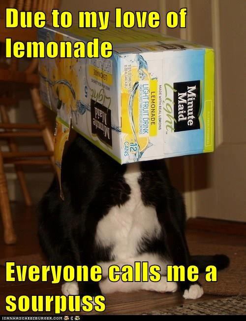 Due to my love of lemonade...