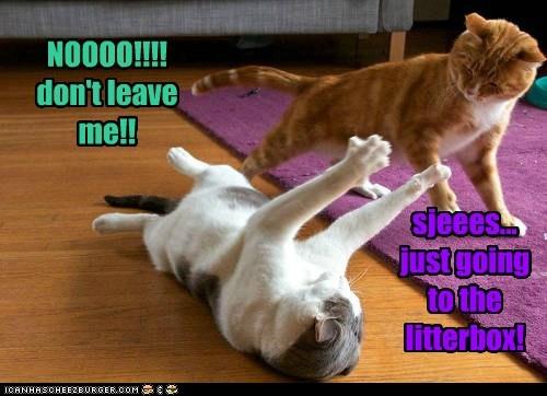 NOOOO!!!! don't leave me!!