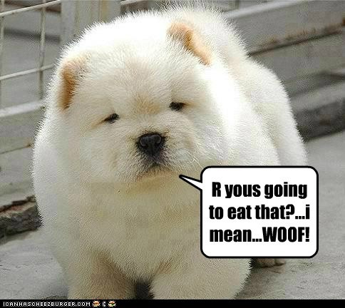 R yous going to eat that?...i mean...WOOF!