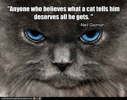 """Anyone who believes what a cat tells him deserves all he gets. "" -Neil Gaiman"