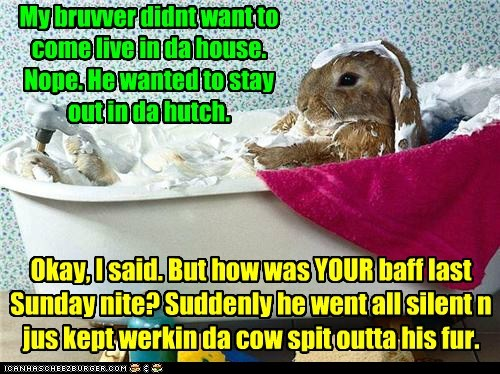 bunnies clean brother house bat - 7030909952