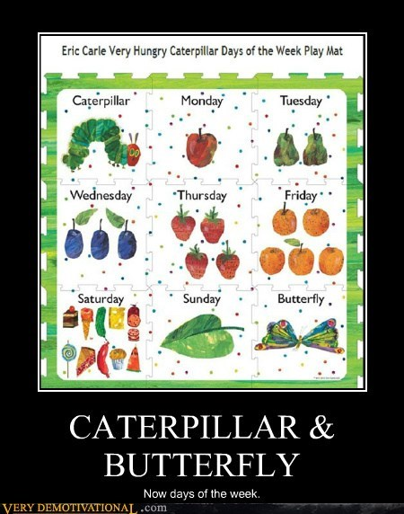 days of the week,butterfly,caterpillar