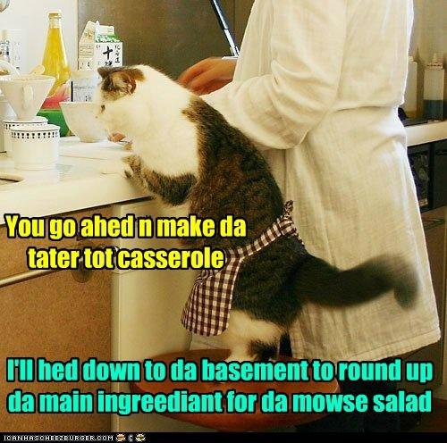 You go ahed n make da tater tot casserole I'll hed down to da basement to round up da main ingreediant for da mowse salad