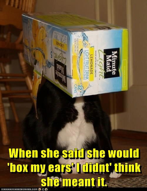When she said she would 'box my ears' I didnt' think she meant it.
