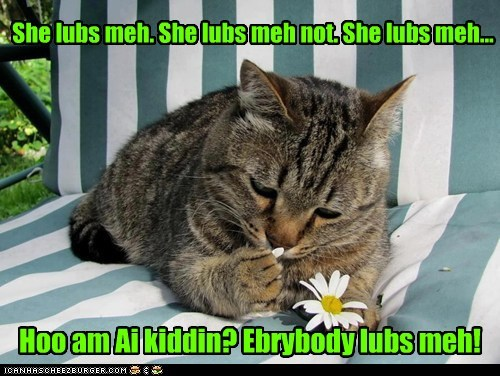 cat flowers love funny - 7031428352