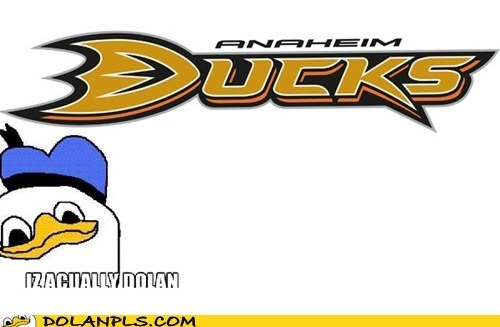 ice hockey,sports,anaheim ducks,dolan