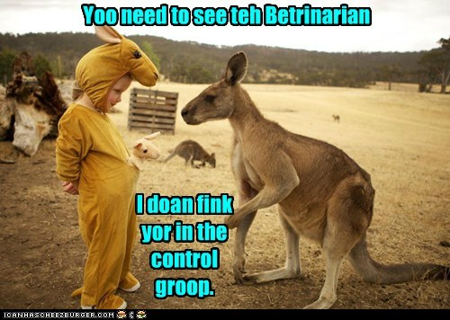 veterinarian,control group,reaction,kangaroos