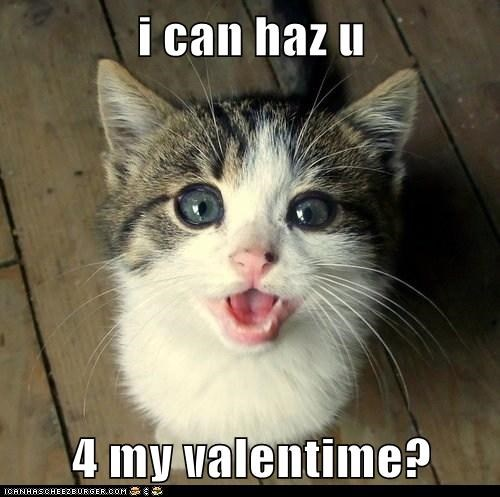 i can haz u  4 my valentime?