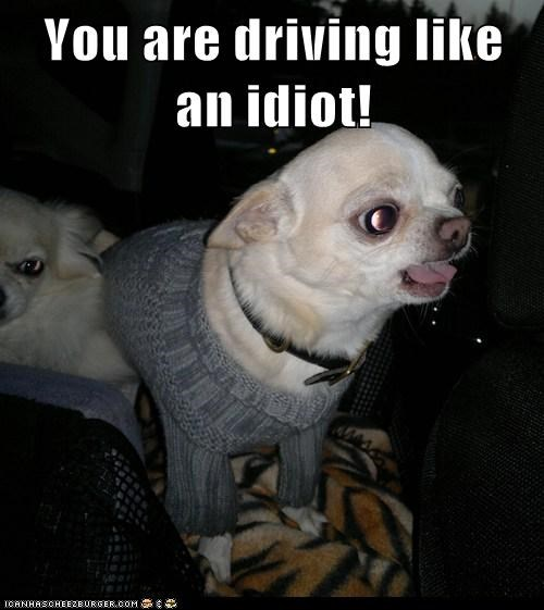 You are driving like an idiot!