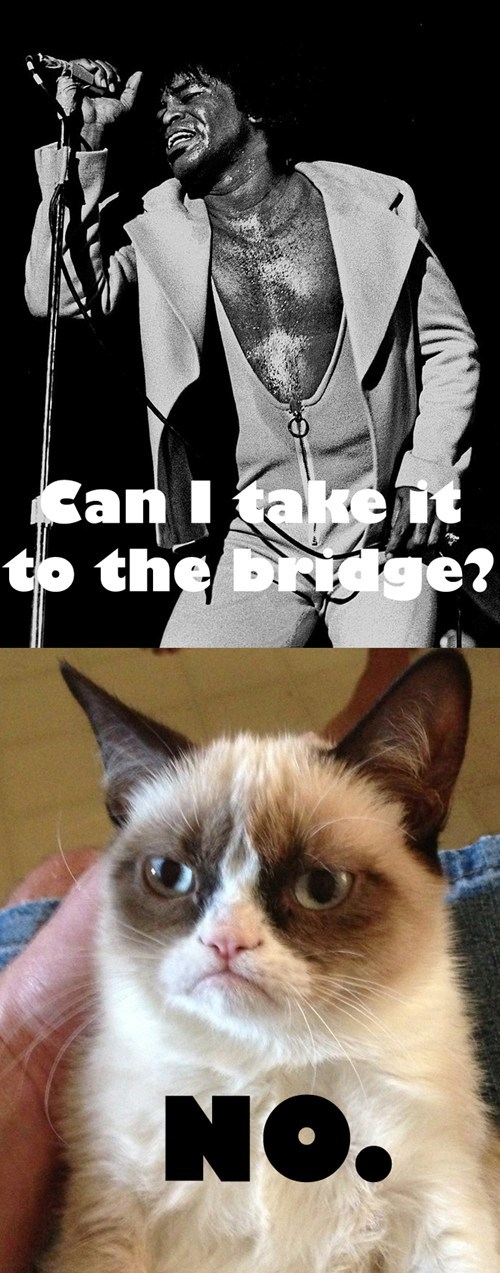 james brown the bridge Grumpy Cat