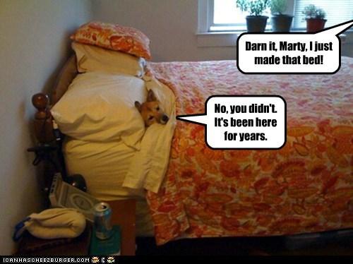 dogs,bed,pun,mine,shiba inu