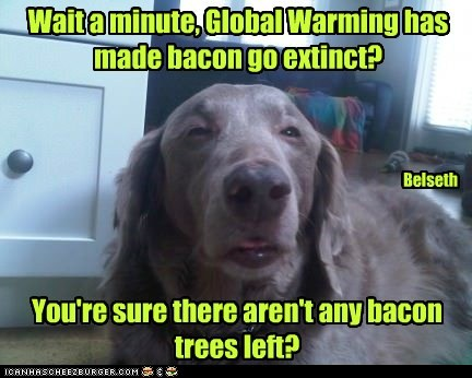 Wait a minute, Global Warming has made bacon go extinct? You're sure there aren't any bacon trees left? Belseth