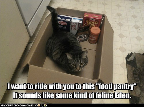 A Land of Endless Noms