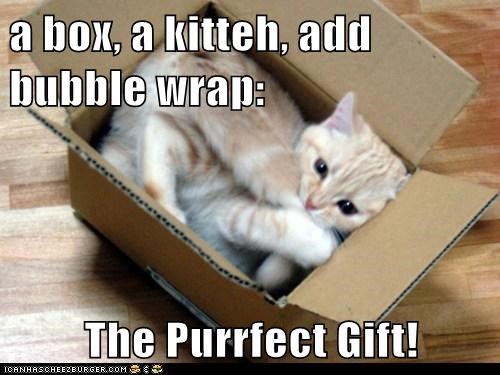 a box, a kitteh, add bubble wrap:  The Purrfect Gift!