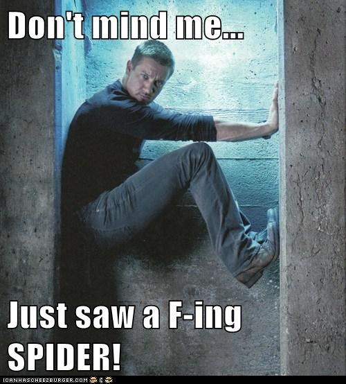 climbing jumped spider scared Jeremy renner - 7034037760