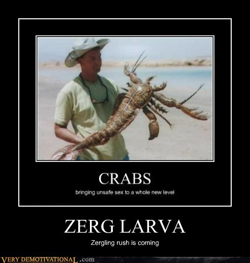 larva star craft Zerg