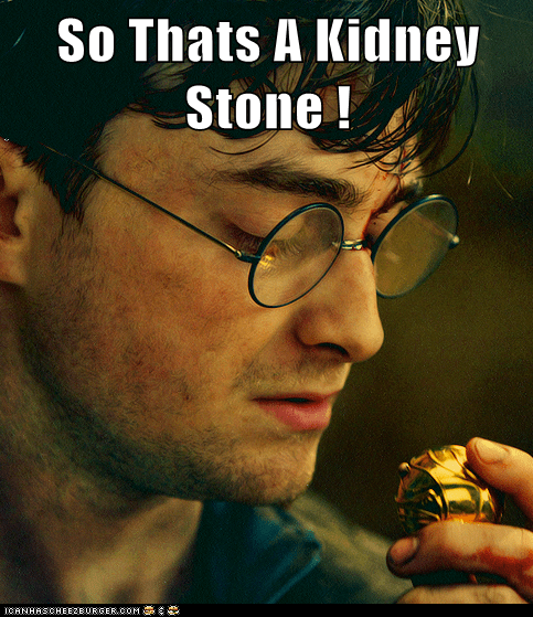 Harry Potter Daniel Radcliffe kidney stone snitch