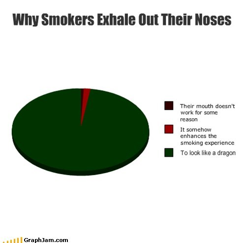 dragons smaug smoking Pie Chart