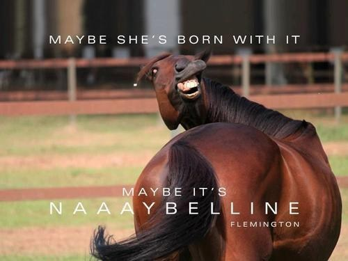 ad campaigns maybelline born with it horses monday thru friday g rated - 7035141376