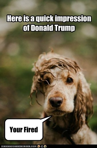 Here is a quick impression of Donald Trump Your Fired