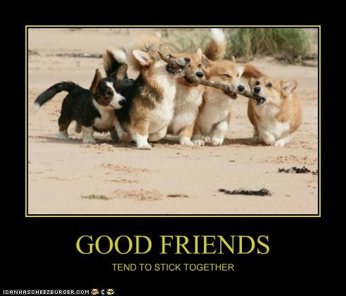 GOOD FRIENDS TEND TO STICK TOGETHER