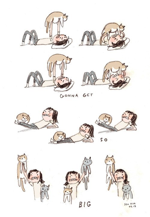 workout comics exercise lift Cats - 7035363328