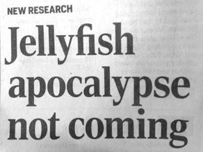 news,headline,apocalypse,jellyfish