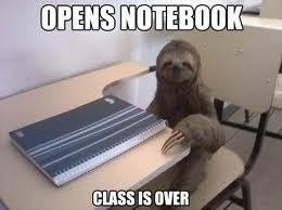 student unfortunate slow sloth - 7035862272