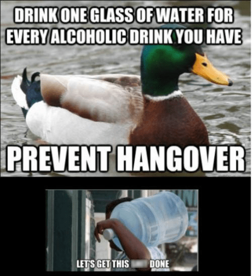 drinking,hangovers,Actual Advice Mallard