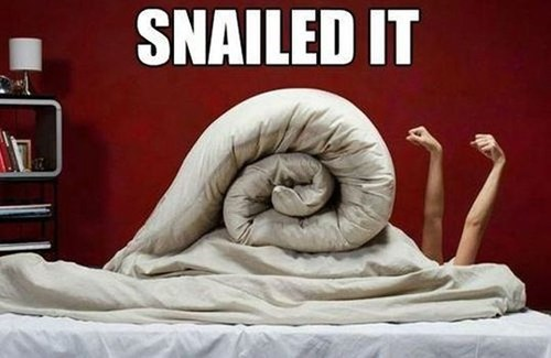 bed cute snail Nailed It g rated win - 7036713984