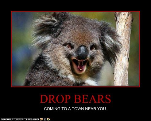 DROP BEARS COMING TO A TOWN NEAR YOU.