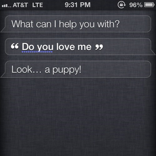 love me siri puppy no