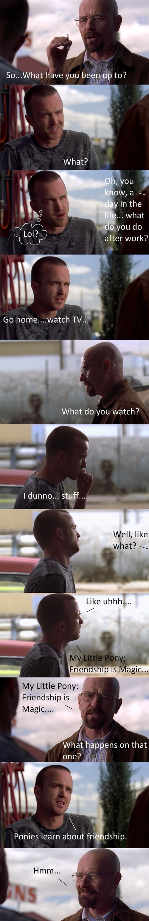 breaking bad,Jesse,brony