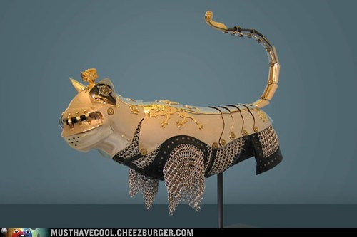 metal,cat,Battle,armor,knight