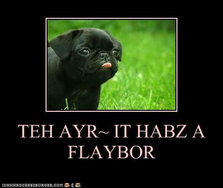 TEH AYR~ IT HABZ A FLAYBOR