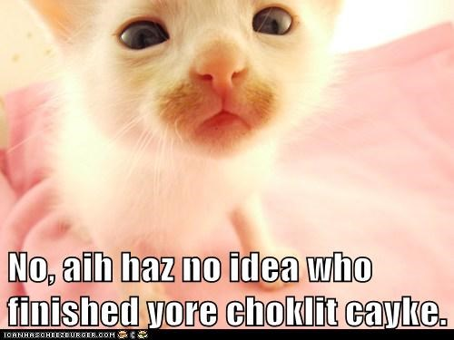 No, aih haz no idea who finished yore choklit cayke.