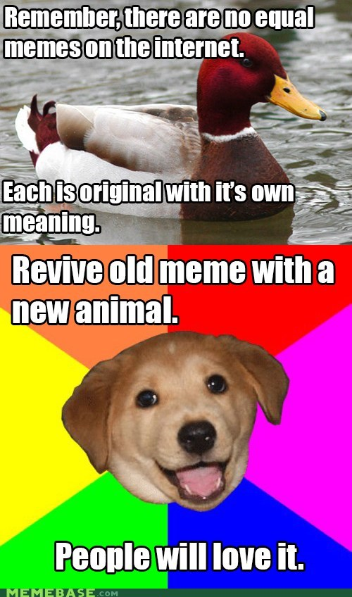 Memes,advice dogs,malicious advice mallard