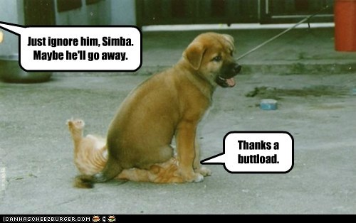 Just ignore him, Simba. Maybe he'll go away. Thanks a buttload.