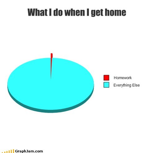 homework,school,procrastination,Pie Chart