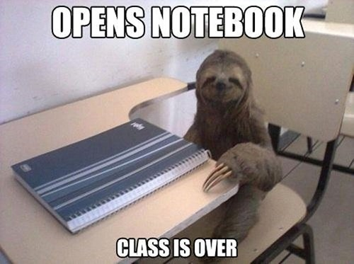 class school slow sloth