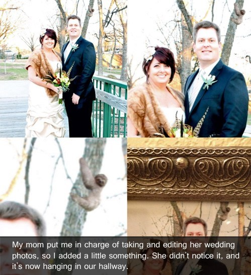 photoshop sneaky wedding photos sloth