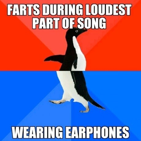 Music,farts,socially awkward penguins,socially awesome penguin